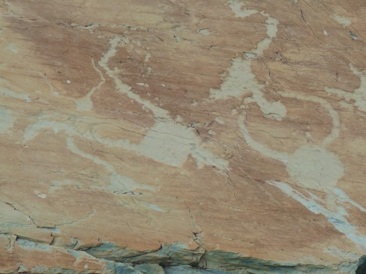 vallon de Fontanalba - la voie sacrée