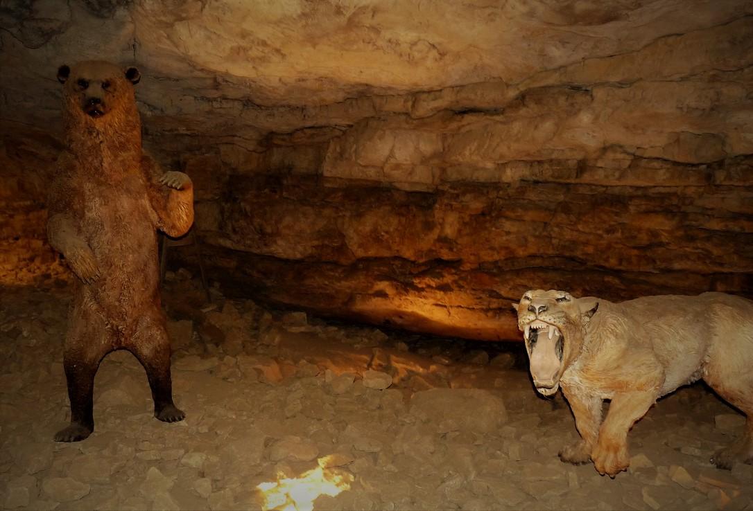 Grottes préhistoriques de Soyons